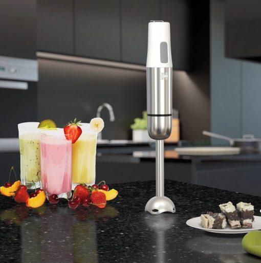 Herzberg HG-5042; Mixeur-PlongeurLe mélangeur est conçu pour mélanger :Les fruits